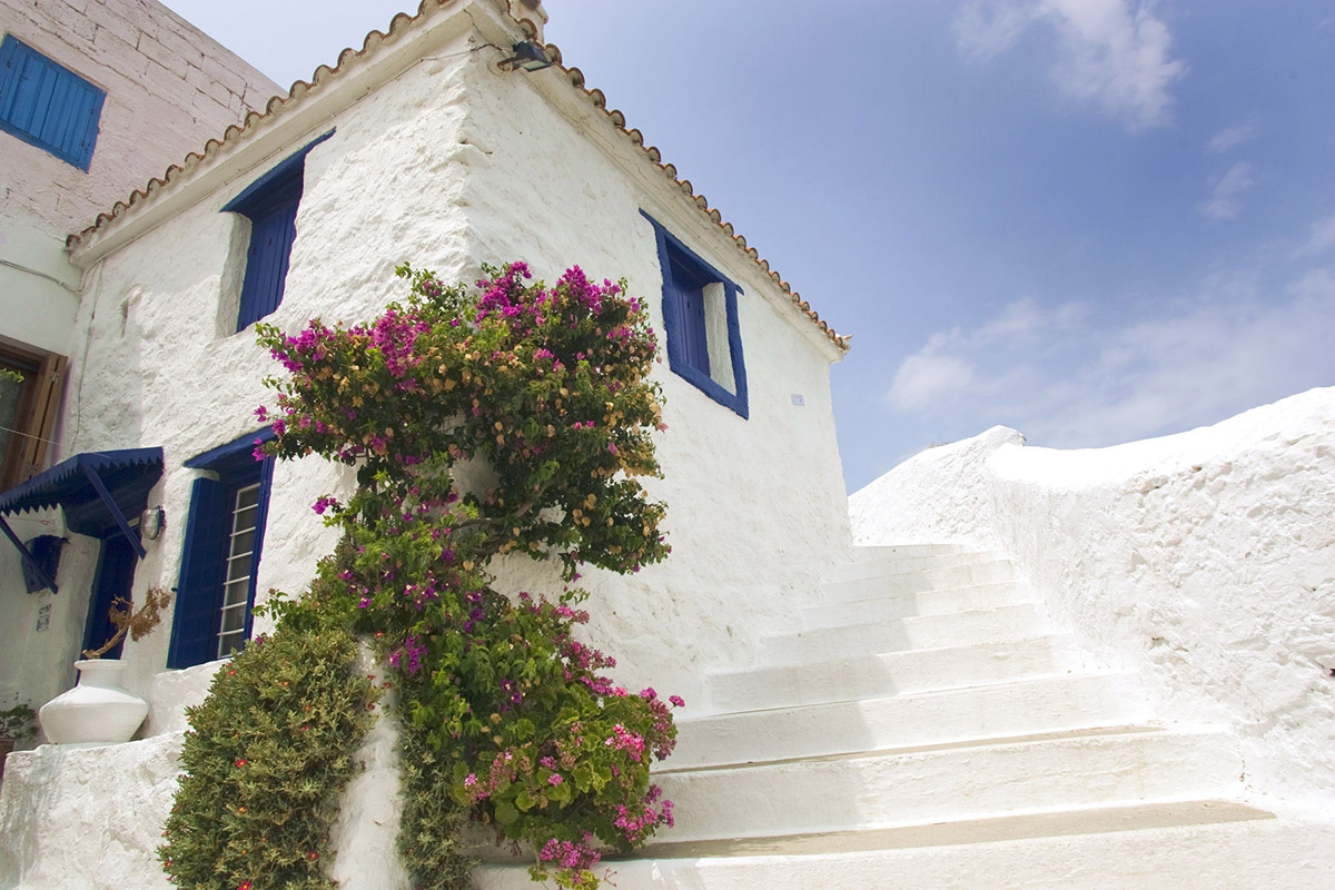 whitewashed_houses_Skopelos